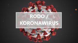 rodo a koronawirus